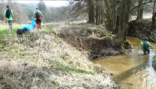 cisty-jevansky-potok