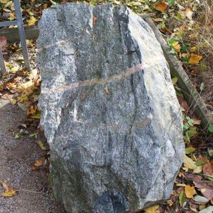 _4a-bio-granodiorit-zf1